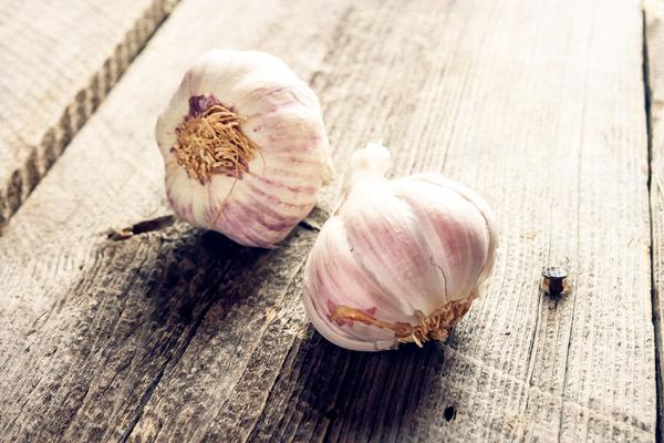 Does garlic boost the immune system?